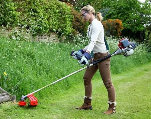 How to Choose a Grass Trimmer