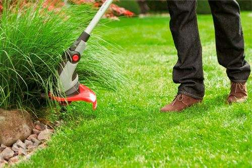 How to Choose the Trimmer For a Garden