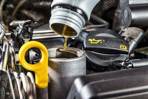 Which Oil Is Suitable For a Gasoline Trimmer