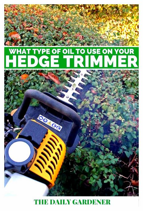 What Oil Do You Need For A Trimmer